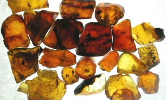The healing properties of amber lamps
